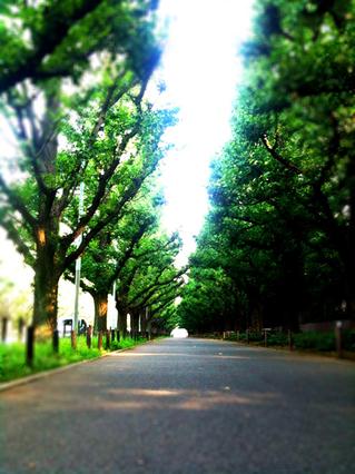 blog散歩.jpg